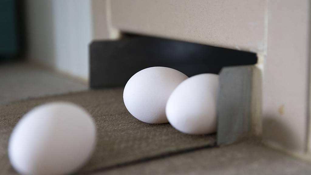 In den Wochen vor Weihnachten ist mit einem höheren Bedarf an Eiern zu rechnen. Der Bundesrat hat deshalb eine vorübergehende Erhöhung des Importkontingents bewilligt. (Themenbild)