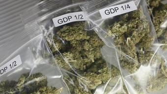 Pannenserie: Beschlagnahmte Drogen aus Polizeidepot gestohlen (Symbolbild)