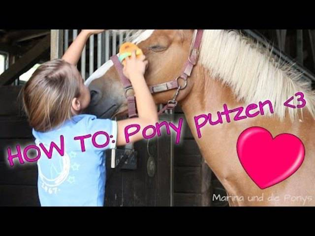 How to: Pony putzen