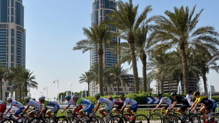 Das WM-Strassenrennen in Katars Hauptstadt Doha ist auf Sprinter zugeschnitten