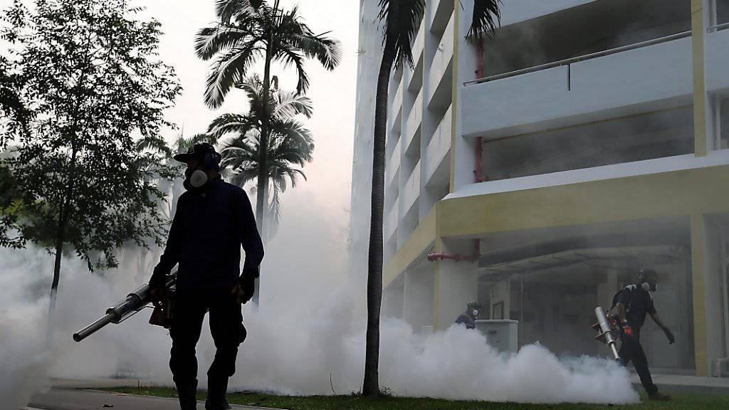 Ärzte stellten nun auch im südostasiatischen Singapur Fälle von Zika-Infektionen fest. Die Behörden leiteten erste Massnahmen ein, um die Ausbreitung bestimmter Stechmücken zu bremsen.