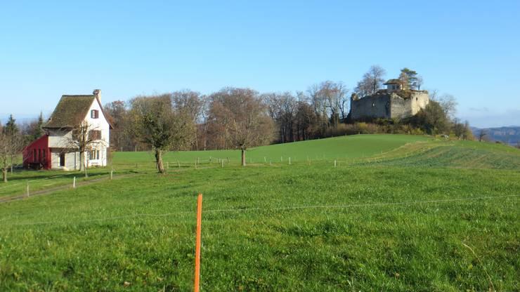 Hier einfach rechts noch eine alte Burg. Die Familie von Tscharnen aus Pratteln tat es so konnte man es vernehmen.