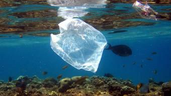 Gefahr besonders für Meeresschildkröten: Plastiksack im Wasser. (Archivbild)