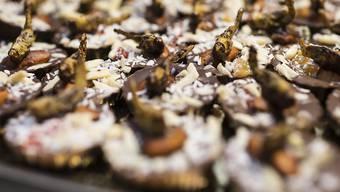 Bei Apéros dürfte es künftig auch Häppchen mit Insekten geben. Der Bundesrat hat diese im Gesetz als Nahrungsmittel anerkannt. (Archivbild)