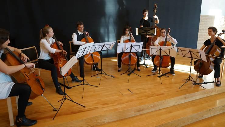Ensemble Cellibassi