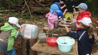 Die Kinder der Naturspielgruppe lernen die Natur schon in jungen Jahren kennen. zvg