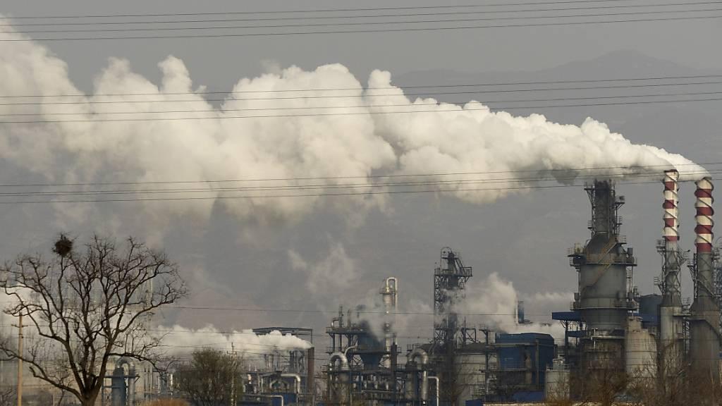 Regierung sieht Versagen der Energieaufsicht im Klimaschutz