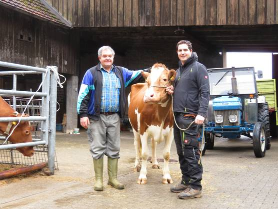 Jakob und Lukas Nussbaumer mit Bavaria, einer der 20 Kühe, die kommenden Samstag auch versteigert wird.