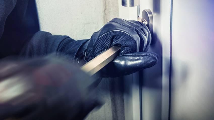 Mutmassliche Einbrecher festgenommen