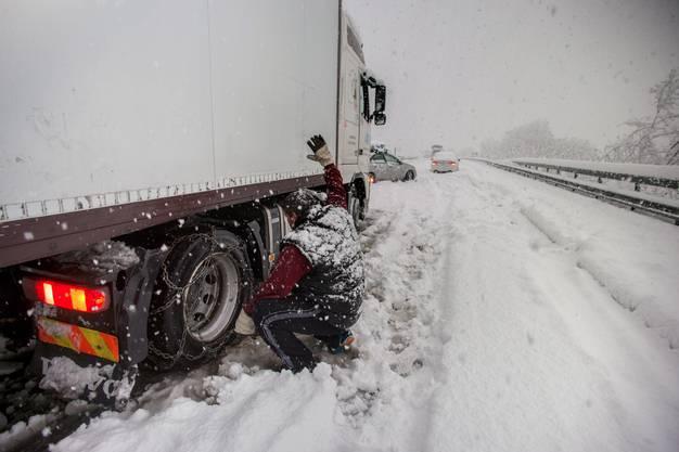 Das Tessin versinkt im Schnee-Chaos. (4)