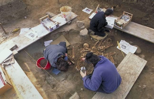 Eine Ausgrabung findet immer als Teamarbeit statt, oft mit Spezialisten aus verschiedenen Fachgebieten (Archäologen, Anthropologen, Geologen u.a.).