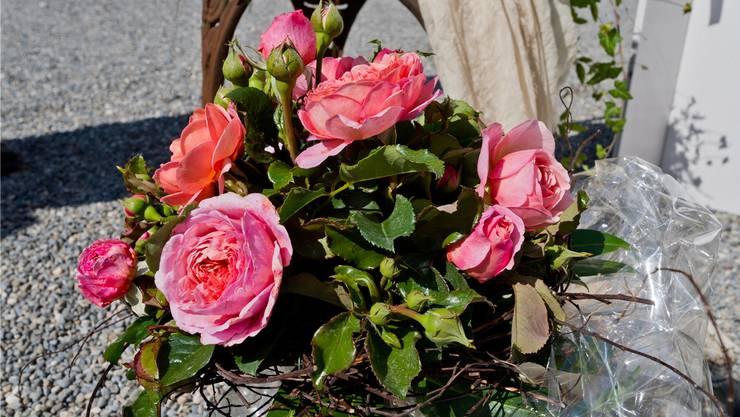 """Taufe der Rose """"Schloss Wildegg"""", die durch ihren rosa Farbton und den intensiven fruchtigen Duft besticht."""