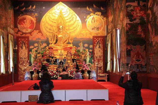 Der Blick in den Tempel