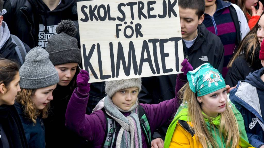 Greta Thunberg am Fridays-for-Future-Marsch in Hamburg.