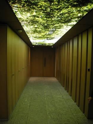 Langer Gang mit Wald-Feeling