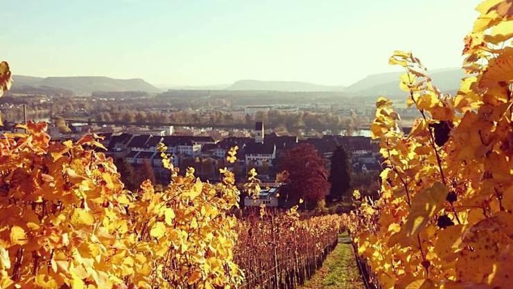 Nicht nur in Klingnau, auch in anderen Ortschaften des Zurzibiets lässt es sich schön wohnen und leben.