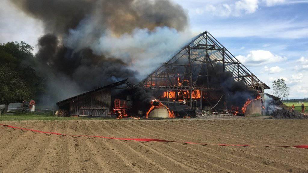 Beim Brand einer Scheune in Unterstammheim entstand am Dienstag ein Schaden von rund einer Million Franken. Eine Kuh verlor in den Flammen ihr Leben.