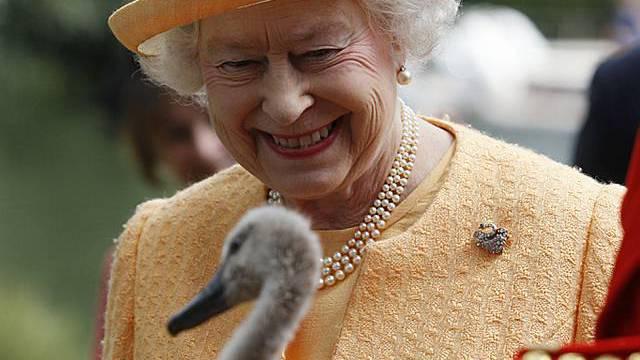 Queen Elizabeth mit Schwan