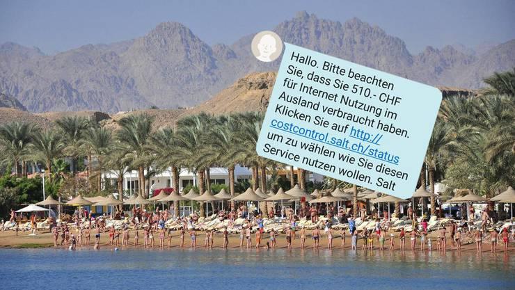 Ferienidylle im Ägypten: Doch dann kam diese SMS von Salt.