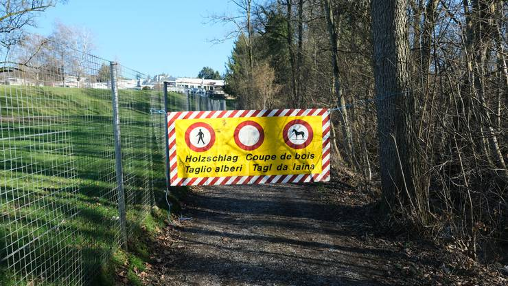 Trotz Absperrung und Blachen mit Verbotszeichen: Spaziergänger kreuzen am Stockacherbach auf und wollen den Weg passieren.