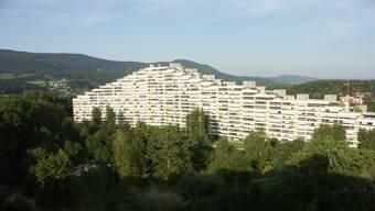 In der «Telli» werden ab Februar mehr als 600 Wohnungen ökologisch auf den neusten Stand gebracht.