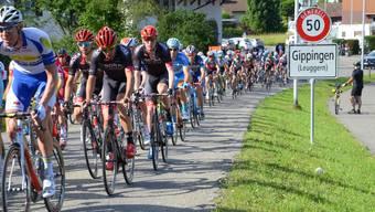 Das Fahrerfeld beim Aufstieg von Gippingen zum Ziel in Leuggern.