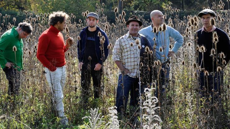 Die legendäre Schaffhauser Band Aeronauten spielt einen fröhlichen Mix aus Pop, Garagenrock, Punk und Soul. ZVG