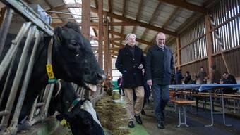 Die Kühe im Stall kosten den Bauern Zeit und Geld – für ihre Milch sollen Landwirte künftig mehr Geld erhalten, fordert Markus Ritter, Präsident des Schweizer Bauernverbandes (rechts).
