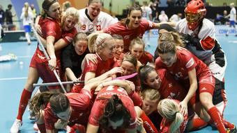 Unihockey-WM, Halbfinal, Schweiz - Tschechien (14.12.2019)