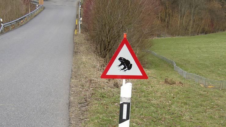 Die Warntafeln stehen bereit, um die Autofahrer an die Frösche zu erinnern.