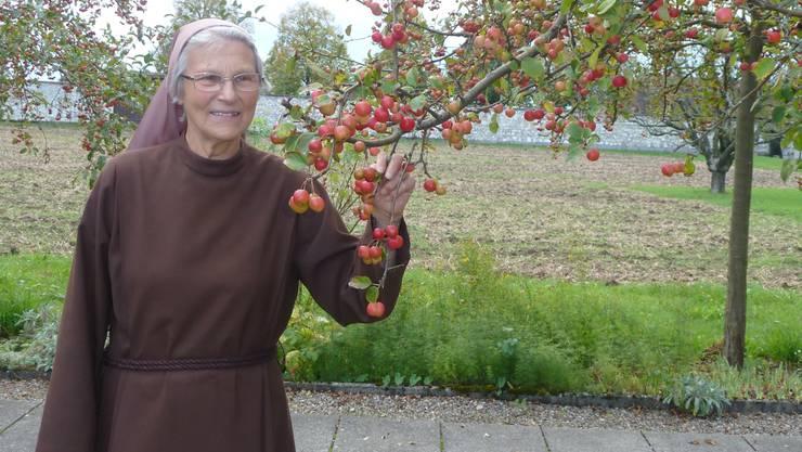 Sr. Priska freut sich auf die reifen Äpfel im Klostergarten.