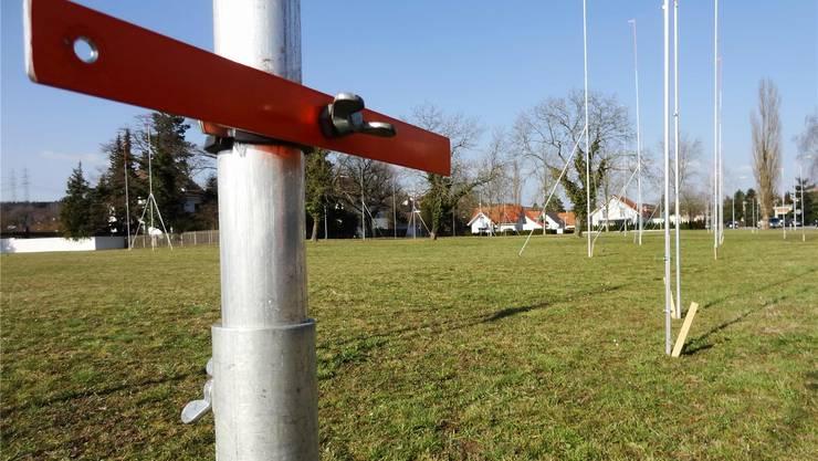 Der Stangenwald auf der Kraftwerkwiese in Laufenburg markiert die geplante Überbauung Rhy-Park. chr