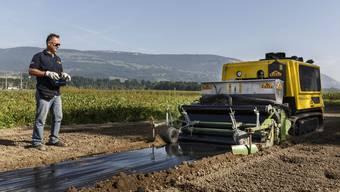 Die Dampffräse wird per GPS gesteuert und der erwärmte Boden mit einer Folie abgedeckt.