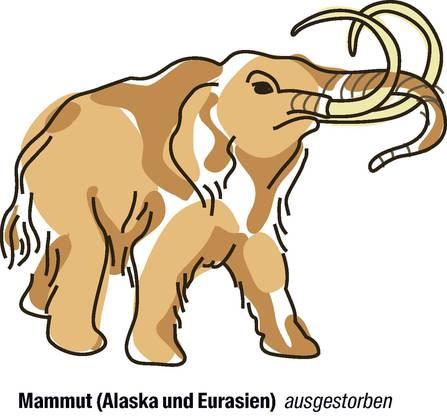 Vorschlag von Israel: der Artenschutz soll strenger werden. Das Auftauen des Permafrosts legt immer mehr Mammuts frei, sie werden für viel Geld gehandelt. Israel fordert darum, den Handel mit Mammutteilen strenger zu regulieren.