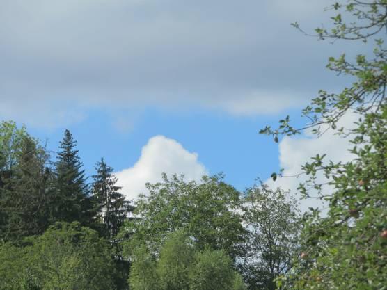 Wolken hat es oft, leider nicht den Regen, eben in unserem Frenkendorf.