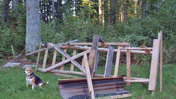 Diesmal wurde ein Hochsitz im Jagdrevier 17 zerstört.