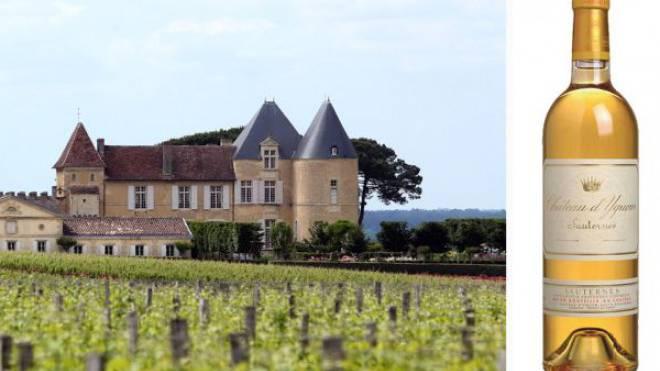 FIRST CLASS: Ein Sauternes vom Château d'Yquem.