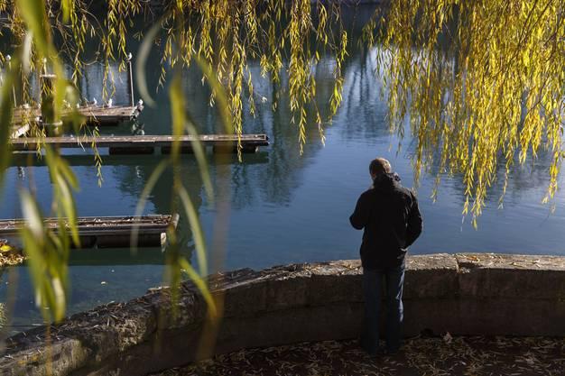 Auch im November gibt's noch grüne Blätter und sonniges Wetter.