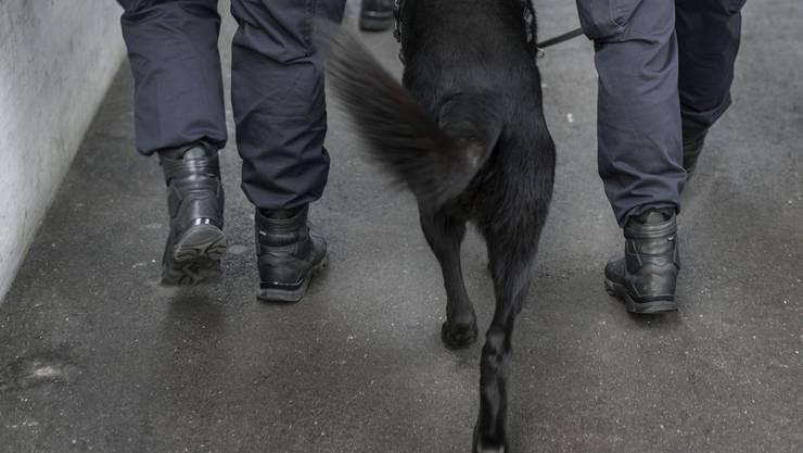 Beim Einsatz war auch ein Polizeihund dabei. (Themenbild)