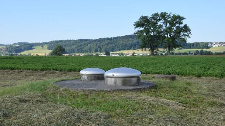 Vor drei Monaten vom Netz genommen: Grundwasserfassung Eichholz in Wohlen, wo die Cholorthalonil-Werte zu hoch sind.