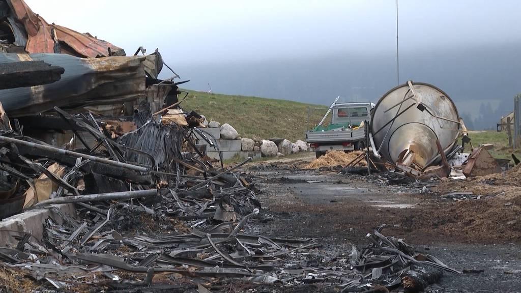 50 Kälber im Brand verloren: Petition soll der betroffenen Bauernfamilie helfen, im Kampf gegen eine Strafanzeige der Tierschutzorganisation Peta