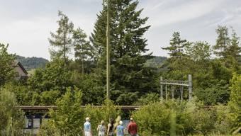 Den ersten öffentlichen Widerstand gegen den Ausbau von 5G wagten Anwohnende der Überbauung Mühlebächli letzten Sommer. Sie sammelten 203 Unterschriften und baten den Gemeinderat, das Bauprojekt von Salt am Bahnhof Weihermatt zu sistieren.