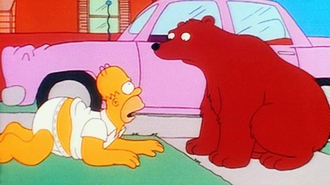 Volksabstimmung in Springfield