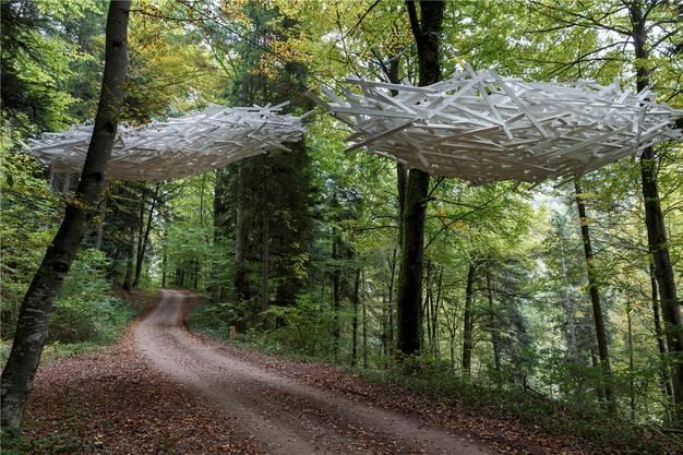 Nr. 15: «Wolken» – die Objekte aus Holz scheinen über dem Waldwanderweg Richtung Holderbank zu schweben.