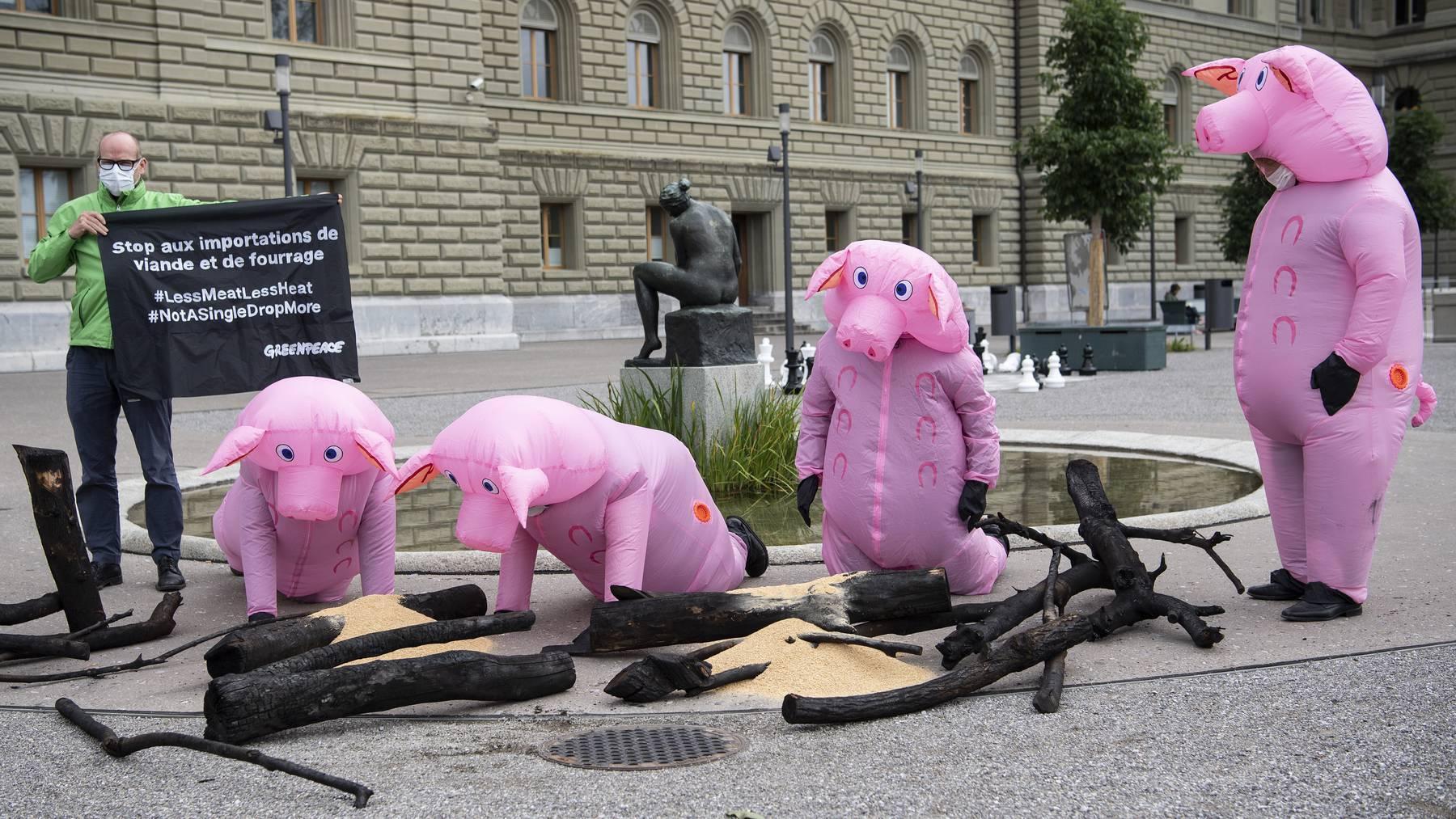 Greenpeace-Aktivisten haben sich als Schweine verkleidet. Sie reichten heute eine Petition gegen den Fleischkonsum ein.