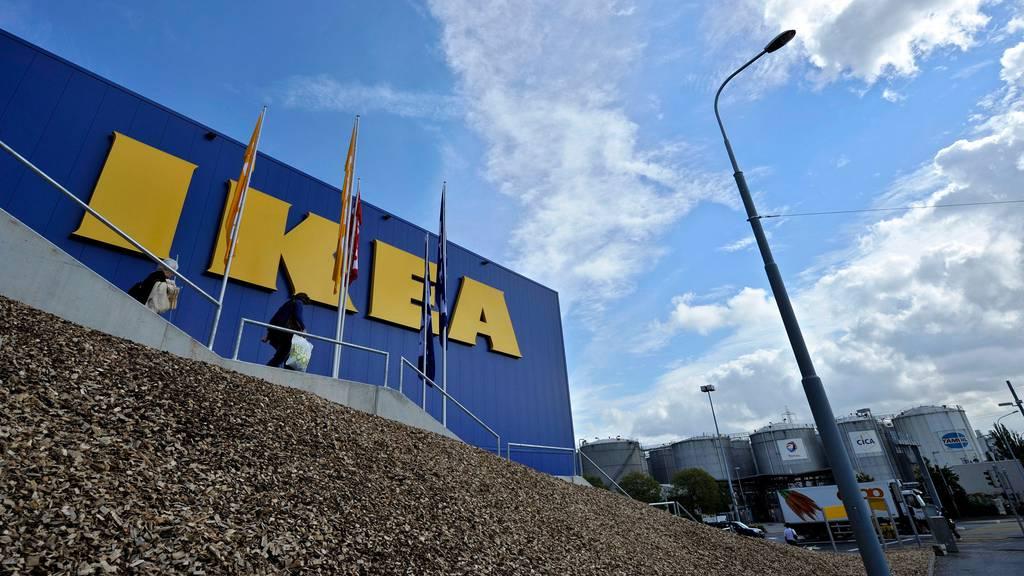 Bruno Manser Fonds erstattet Anzeige gegen Ikea
