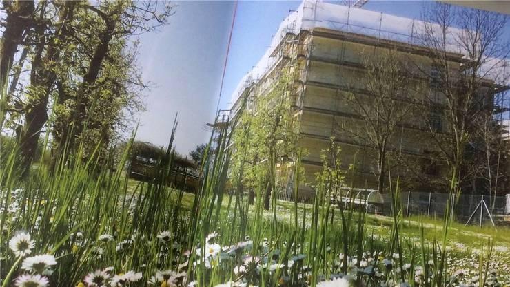 Das Reusspark-Hauptgebäude wurde energetisch saniert – zur Freude der Bewohner und des Personals. TONI WIDMER