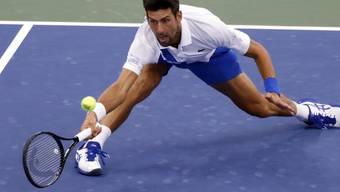 Akrobatischer Novak Djokovic: In diesem Jahr scheint der Serbe nicht schlagbar zu sein