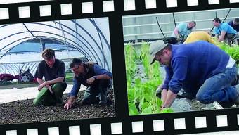 Im ersten Kurzfilm ist zu sehen, wie die Mitarbeitenden mit garstigen Wetterverhältnissen klarkommen.