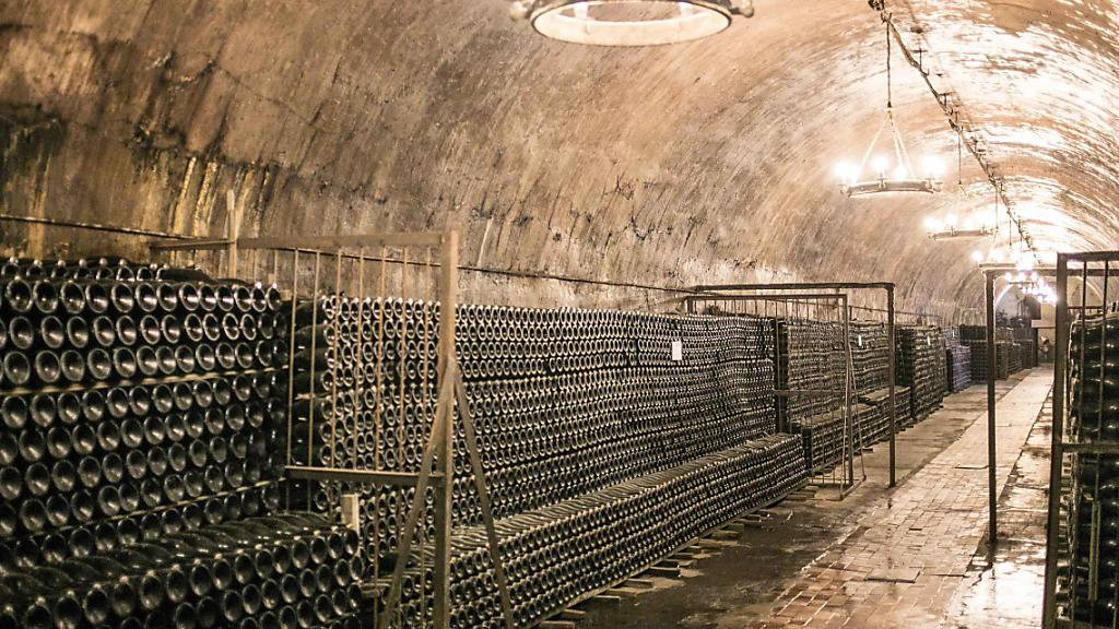 Russischer Wein - Wodka-Nation strebt mit Rebensäften auf Weltmarkt